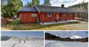 Tessungdalen/Tinn – Koselig hytte med nærhet til Hardangervidda og Imingfjell. 40 min kjøring til Uvdal Alpinsenter. Hytten har en solrik tomt på 3,8 mål. Bilvei frem til eiendommen. Parkering på tomt. Lysløype og lite skitrekk rett ved hytten.