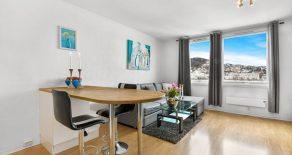 Strømsø / Drammen Arealeffektivt 1-roms leilighet med elveutsikt – Heis – Felles takterrasse – Gangavstand til alt.